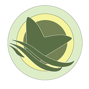 Az Etetőhajó és horgászeszköz bérlés világoszöld logója.